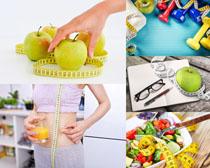 营养减肥标准摄影高清图片