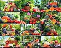 新鲜水果与蔬菜摄影高清图片