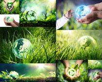 绿色草地环保摄影高清图片