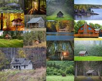 森林房屋摄影时时彩娱乐网站