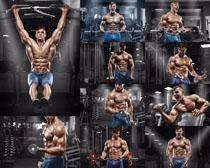 肌肉男健身房摄影高清图片