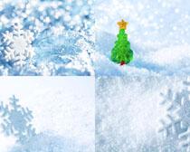 白色雪摄影高清图片