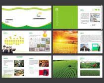 餐饮膳食公司画册设计矢量素材