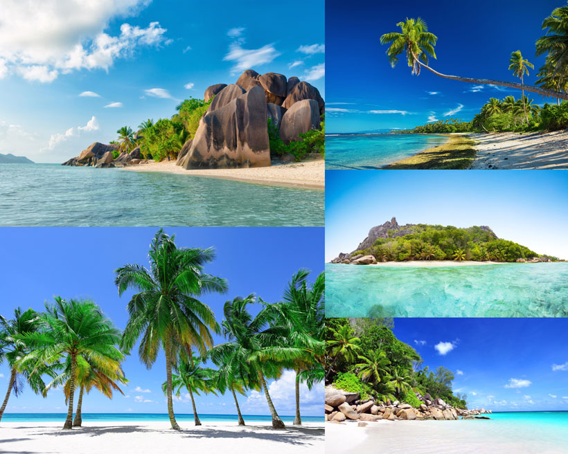 海边风景椰树海岛景观拍摄摄影