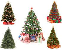 节日圣诞树摄影高清图片