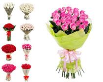 情人节鲜花拍摄高清图片