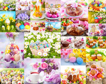彩蛋与花朵拍摄高清图片