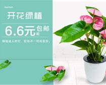淘宝绿色植物海报设计PSD素材