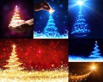 节日圣诞树星光背景摄影高清图片