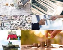 美元货币展示拍摄高清图片