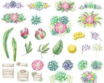 水彩花卉筆刷