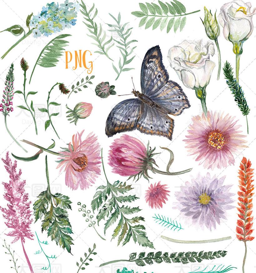 水彩植物蝴蝶笔刷