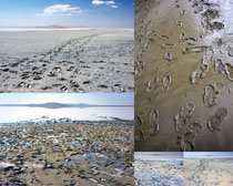 沙滩脚印风景摄影高清图片