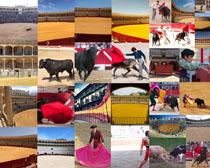 西班牙斗牛男人摄影高清图片