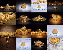 金子摄影高清图片