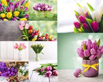 装饰鲜花摄影高清图片