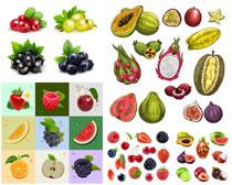 各色水果矢量素材