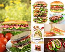 汉堡包西红柿拍摄高清图片