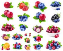 绘画水果摄影高清图片
