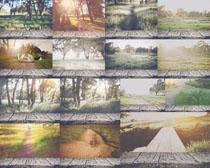 木板与风景拍摄高清图片