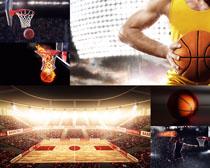 体育篮球运动摄影高清图片
