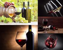 红葡萄酒展示摄影高清图片