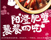 阳澄肥蟹宣传海报PSD素材