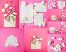 白紙與花朵裝飾拍攝高清圖片