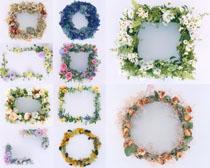 花朵边框花环摄影高清图片