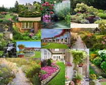 美丽的花园风景拍摄高清图片