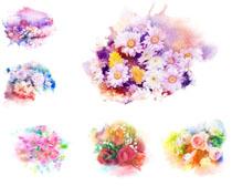 水粉画花朵摄影高清图片