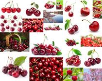 樱桃水果拍摄高清图片
