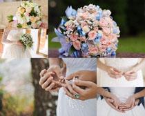 浪漫爱情戒子花朵摄影高清图片