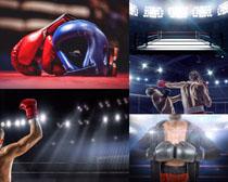 比赛场拳击人物摄影高清图片