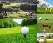 高尔夫运动场地摄影高清图片