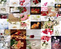 情人节花朵装饰摄影高清图片