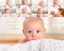 可爱baby写真拍摄高清图片