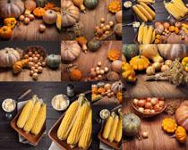玉米南瓜食物摄影高清图片