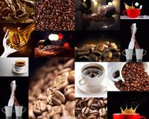 咖啡与果实拍摄高清图片