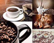 咖啡果展示拍摄高清图片