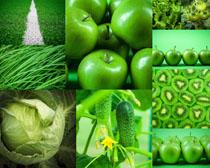 绿色食物蔬菜摄影高清图片
