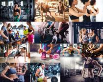 健身房锻炼的青年摄影高清图片