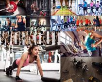 健身的欧美男女拍摄高清图片