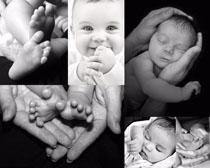 出生宝宝黑白照片摄影高清图片
