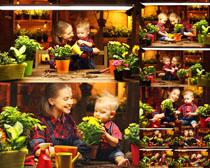 母亲与儿子盆栽摄影高清图片