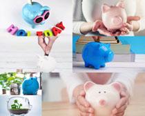 小猪存钱罐摄影高清图片