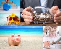 可爱存钱小猪摄影高清图片
