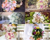 一束婚礼花朵摄影高清图片