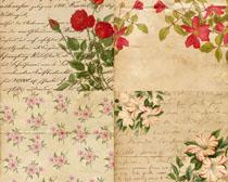 纸张背景花朵摄影高清图片
