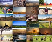 草原上的自然风光摄影高清图片